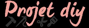 projet-diy-logo-test